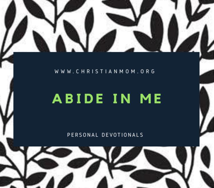 Abide in Me – Christian Mom